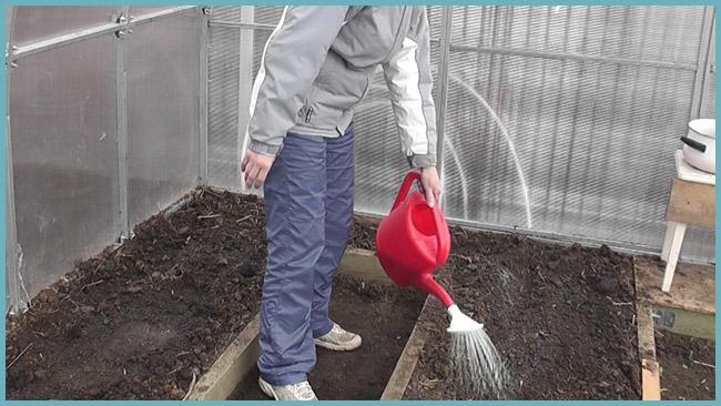 Подготовка грунта к посадки